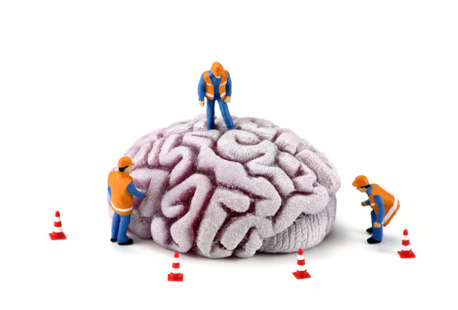 DYK? Antibiotics can stop growth of new brain cells and cause a decrease in memory